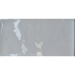 Artbrick Grey Glossy 10x20