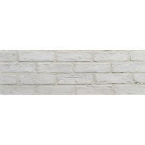 Väggtegel White 5.5x21