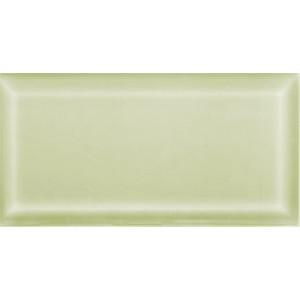 Metro Fasad 10x20 Olive Blank