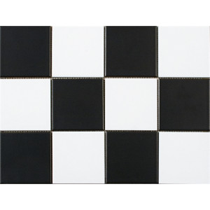 Chess Black & White 10x10